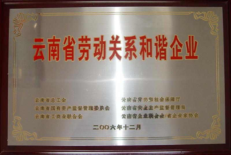 2006年—云南省劳动关系和谐企业